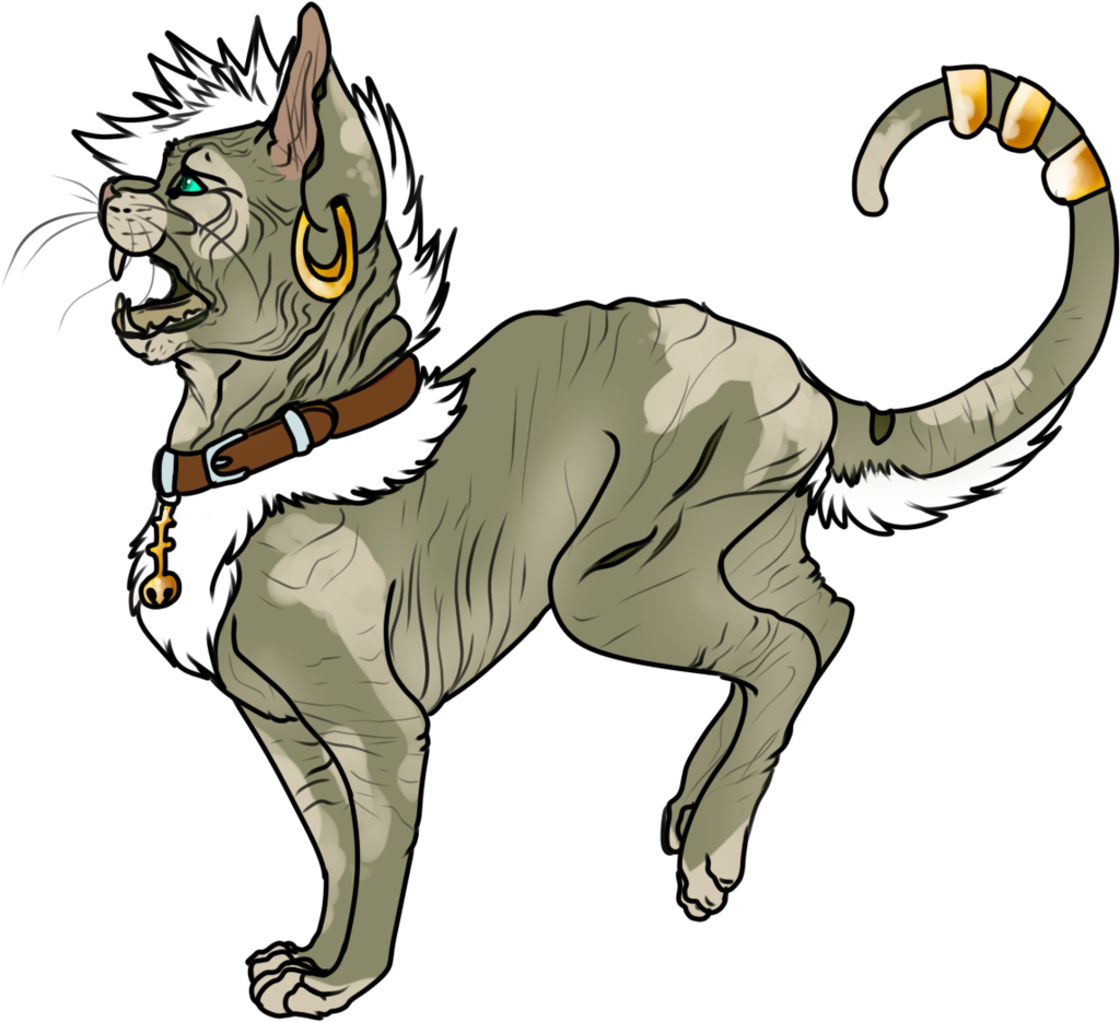 Maned Sphynx Offer to adopt