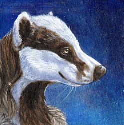 Badger By Moonlight