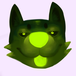 weed dog