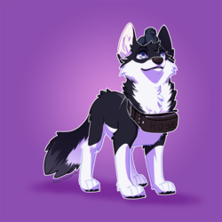 (Commission) - Look at My New Toy - DogiplierHusky