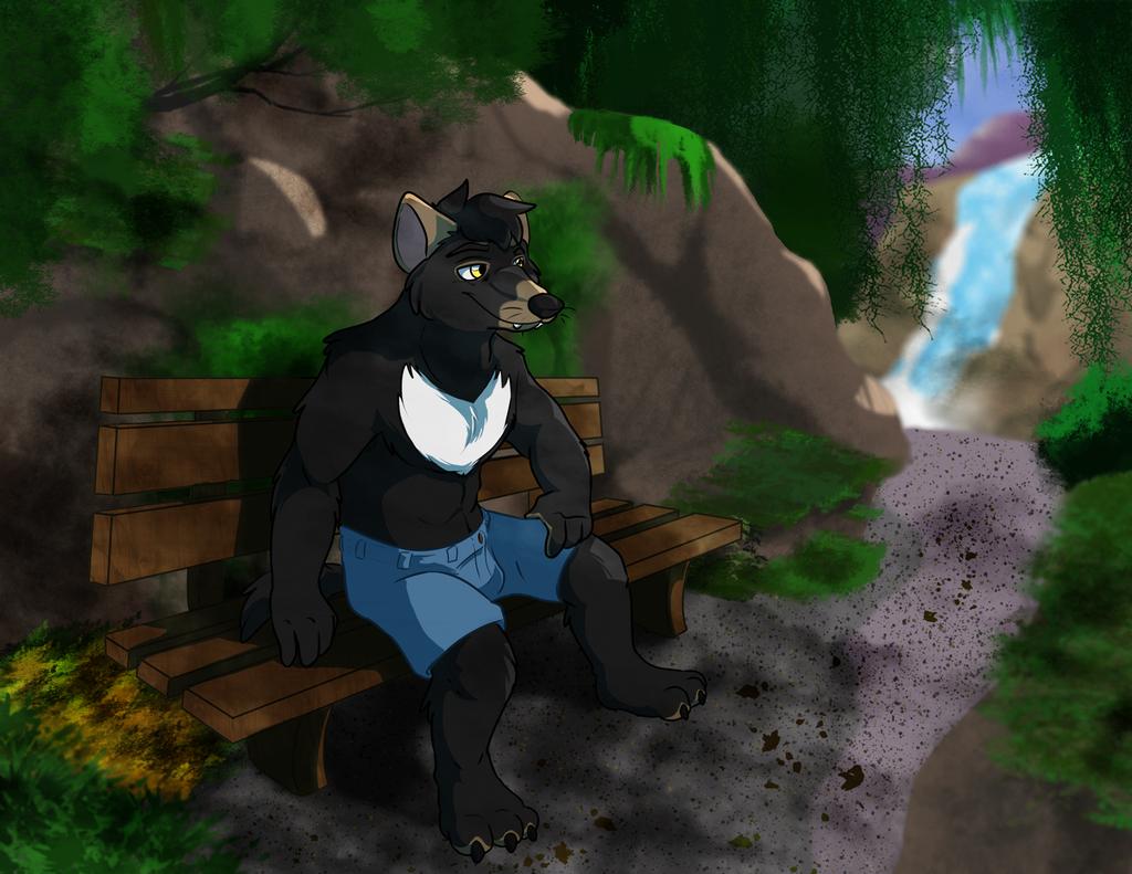 Xander Enjoying the Forest
