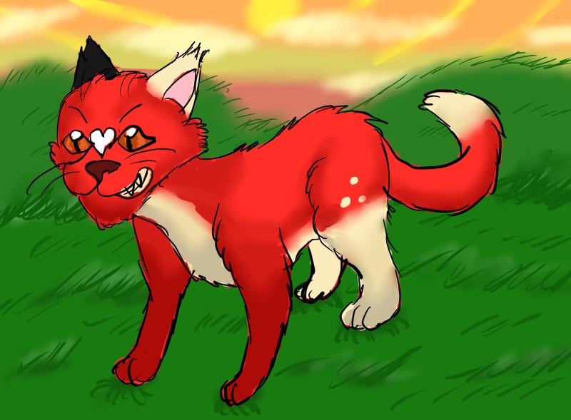 Ace is a Fierce Kitty