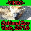 -VIDEO- Oakland Zoo Visit