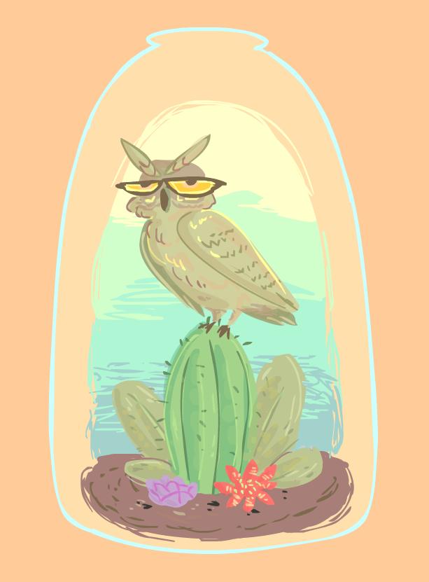 Owl Bottled