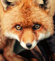 November Fox