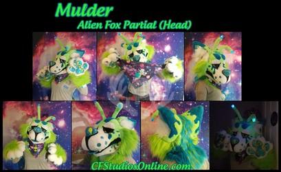 Mulder Alien Fox Partial Auction