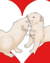 Valentine's Ferrets