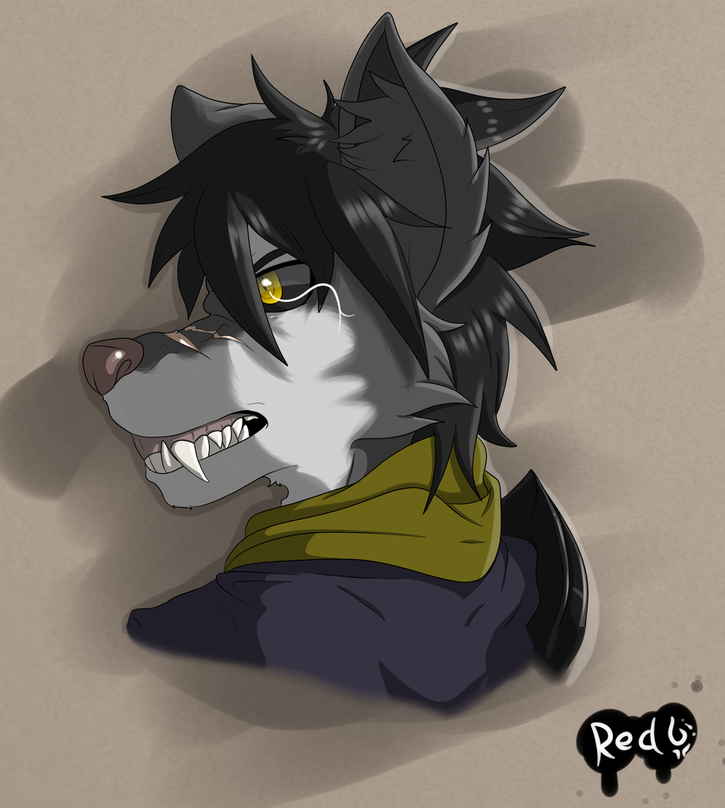 Connor The Wolf