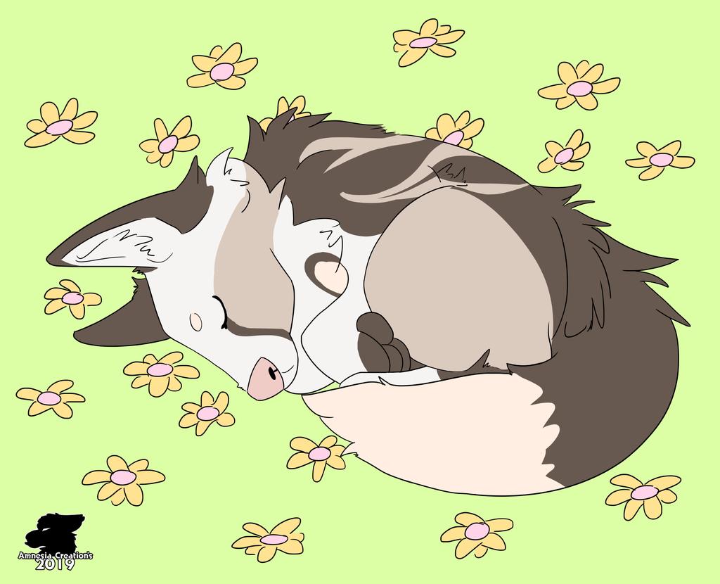 Sleepy Medows