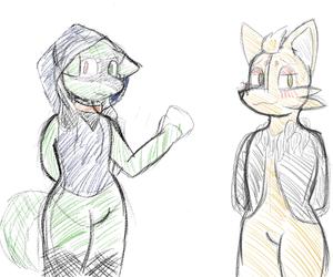 Riolu and Zorua