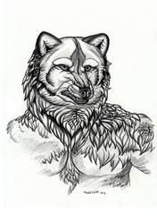 Dark-arctic-fox portrait