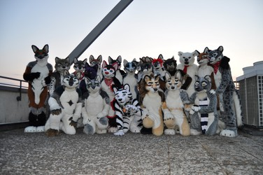 [EF21] One Fur All photoshoot