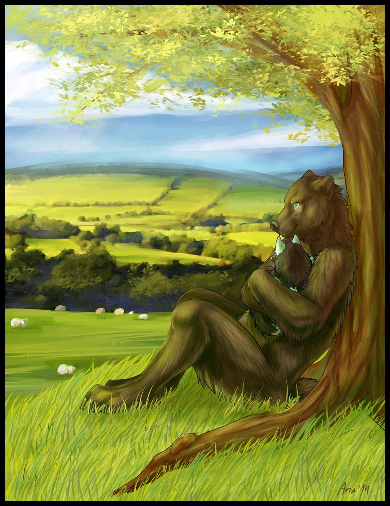 Peaceful Field