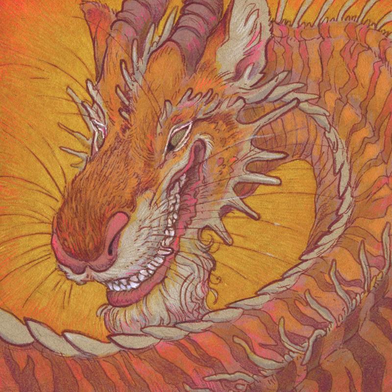 Tigerfluffum Dragon