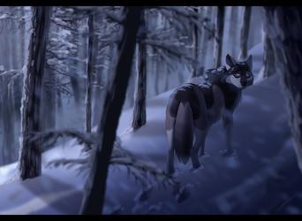 Winter Solitude by Contusio