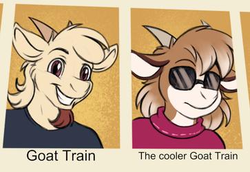 the cooler goattrain