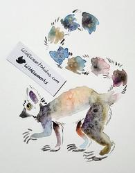Splotchy Lemur (SALE!)