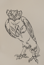 It's a bug-owl, what of it?
