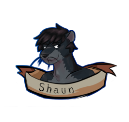 Shaun badge