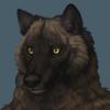 avatar of archer