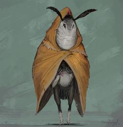 Moth gatherer