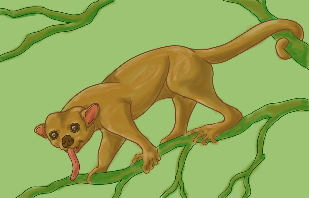 Kinkajou - Artists for the Amazon