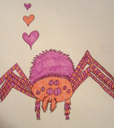 Spiders want love