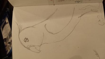 Teal Sketch