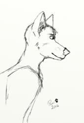 Dog sketch 1-28-2017