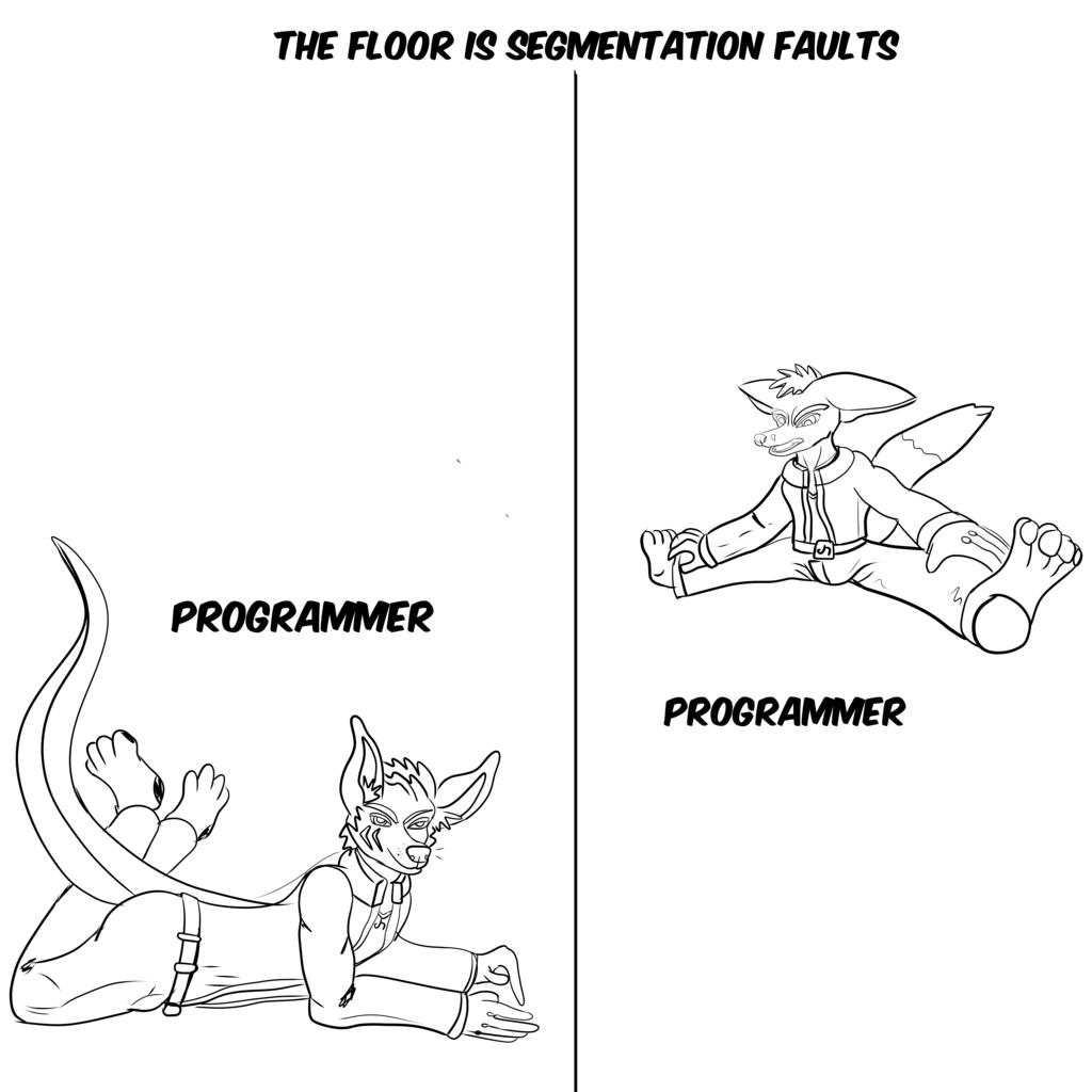 Floor Is Segmentation Faults