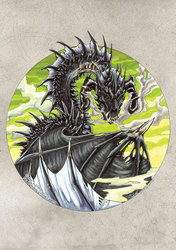 Circle Dragon. Black