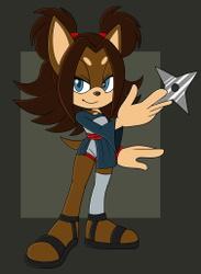 Rudra the Hedgehog
