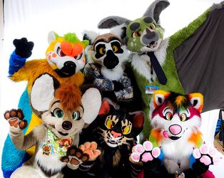 FurTheMore 2016 - Paws Up!