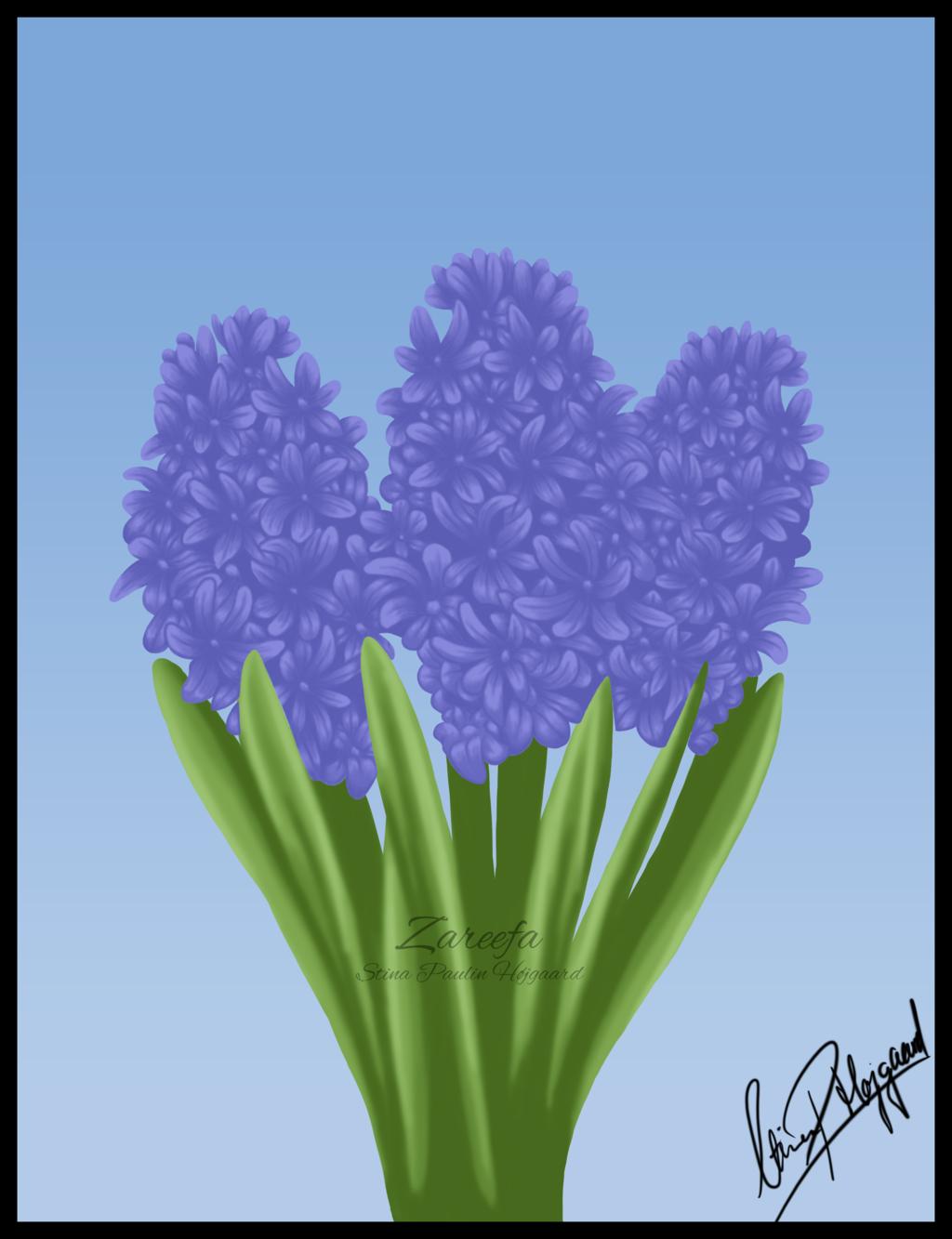 Hyacinths birthday card