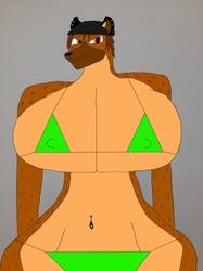 Bikini Danni!