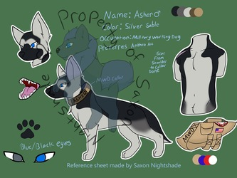 Reference sheet for Delton on Amino