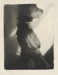 Sam Portrait II