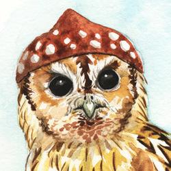 Strange Tawny Owl