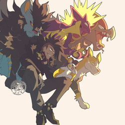 YOU ARE CHALLENGED BY GYM LEADER ☆GODBIRD☆