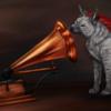 avatar of hyaena