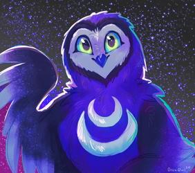 Artemis the best owl