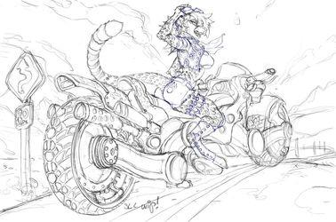 High Velocity Sketch