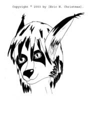 headshot of mien