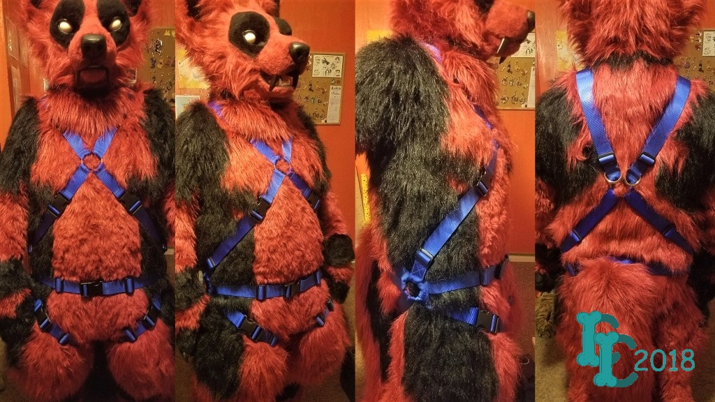 Full X Harness with Leg Straps