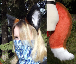 Fox Ears and Tail for Argonfox