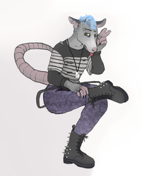 Opossum Commission