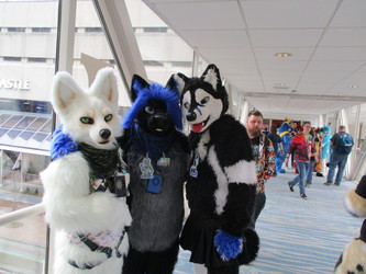 Furnal Equinox, Ghost, Meehsa, and Johnny Husky