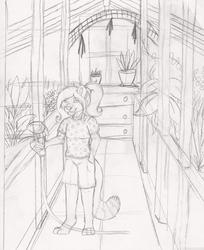 Gardening Sketch