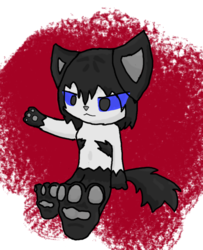 Wuffcatboy thing