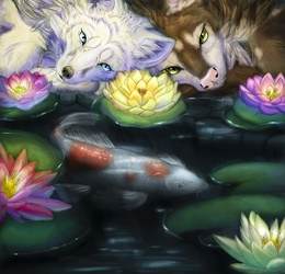 Collab - Water Lillies